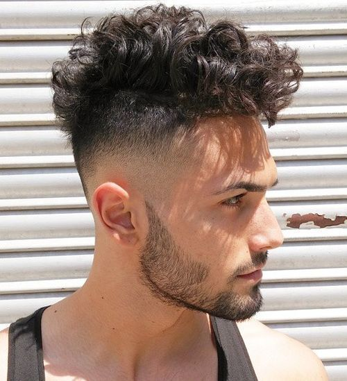 High Fade with Curly Hair 1